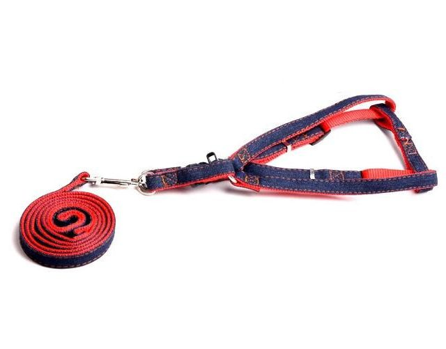 Dog's Harness and Leash Set