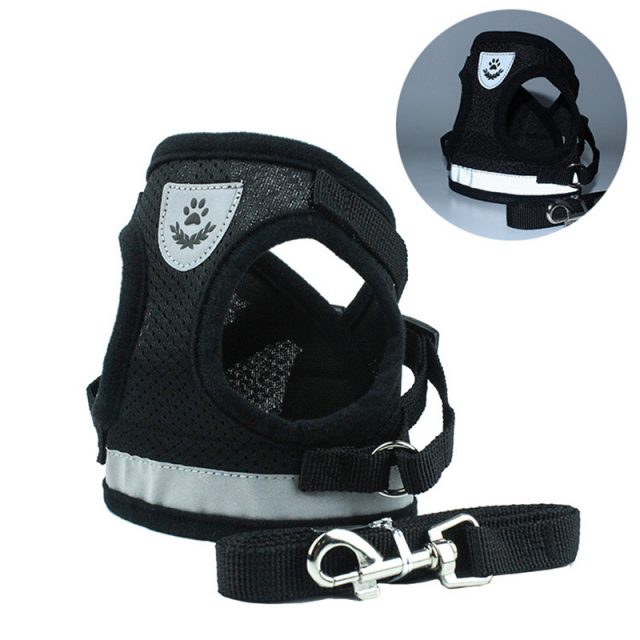 Protective Harness For Small Dogs