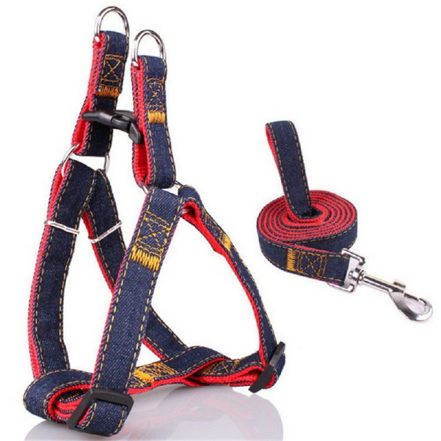 Dog's Denim Harness and Leash Set