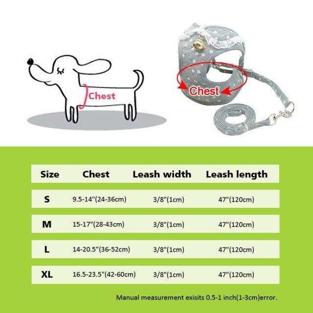 Lace Dog Harness and Leash Set