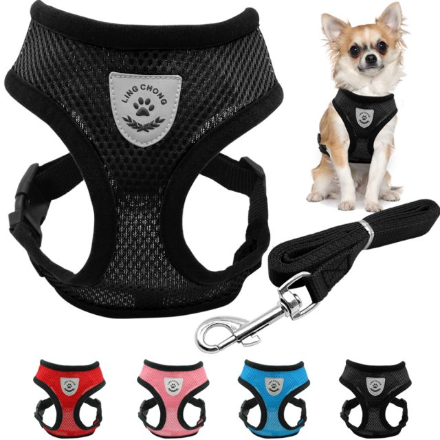 Breathable Small Dog & Puppy Harness & Leash