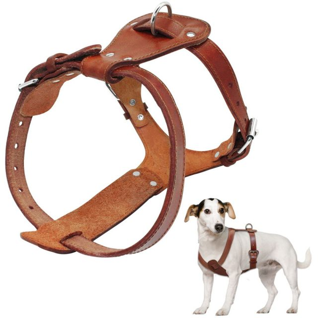 Genuine Leather Dog's Harness