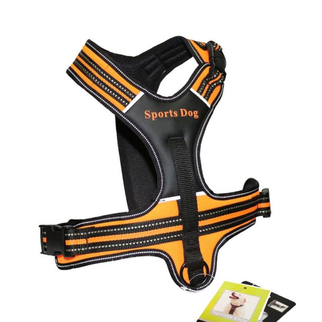 New Dog Leather Pet Harness