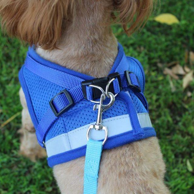 Adjustable Mesh Vest Dog Harness