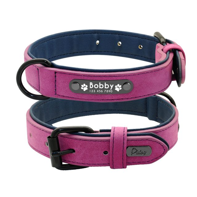 Leather Dog Collar With Engraved Pet ID Tag (5 Colors)